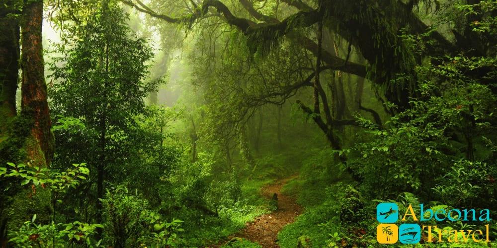 Тур в национальный парк Мтирала