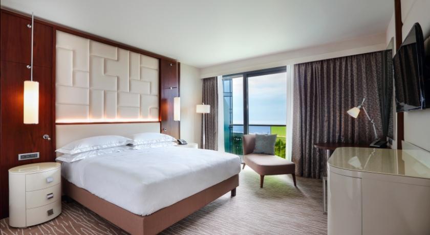 Hilton Standard Single Room