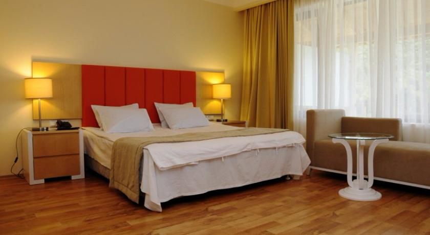 Lopota Standard Single Room