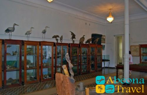 Краеведческий музей или музей Х.Ахвледиани